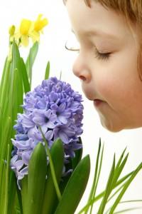 о чем предупреждает запах
